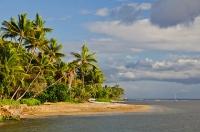 Lahaina Beachfront