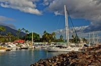 Lahaina Harbor II