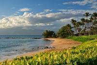 Ulua Evening