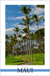 Wailea Palms